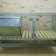 Клетка для откорма кроликов 960х520х360мм (пластиковый пол) фото