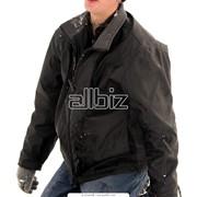 Мужские зимние куртки фото