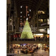 Новогодние и рождественские туры. фото