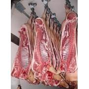 Мясо свинина полутуши охлажденное фото