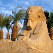 Отдых в Египте фото