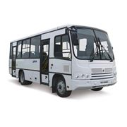 Автобус ПАЗ 320402 фото