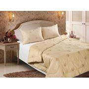 Одеяло из верблюжьей шерсти Verossa Camel фото