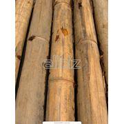 Краны лесозаготовителье фото