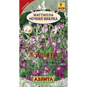 Цветы Маттиола Ночная фиалка смесь (СР) (0,3г) фото