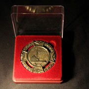 """Медаль """"Приоратский дворец"""" фото"""