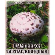 "Сухой мицелий ""Шампиньон бернардовидный"" /10г/ фото"