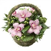 Корзинка с орхидеей фото