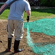 Устройство газона (сеянный, рулонный, гидропосев) фото