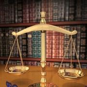 Судебная и административная практика фото