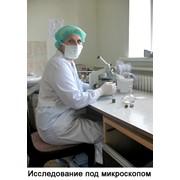 Лабораторные исследования изделий на стерильность фото
