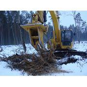 Выкорчевывание деревьев пней фото