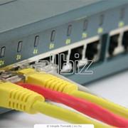 Монтаж и наладка компьютерных сетей. фото