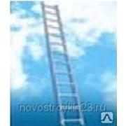 Лестница односекционная 5106, 1х6 ступеней, мах Н=1,67м фото