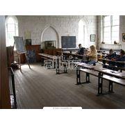 Гуманитарное образование международный обмен фото