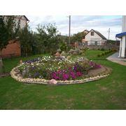Ландшафтный дизайн сада (газоны цветники альпийские горки садовые дорожки) фото