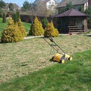 Стрижка газонов покос бурьяна вычесывание газона борьба с сорняками на газоне фото