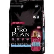 Сухой корм для собак Pro Plan Small & Mini Adult Digestive Comfort 800 г фото