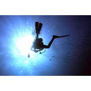 Подводная видеосъемка Underwater Videographer фото