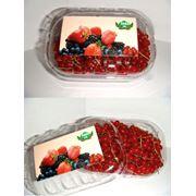 Свежие ягоды в вакуумной и блистерной упаковке фото