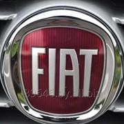 Компьютерная диагностика Fiat. Выезд. фото