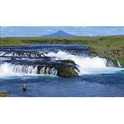 Рыбалка в Исландии Рейкьявик фото