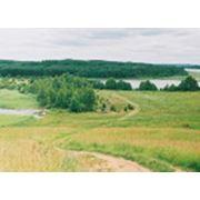 Тур на рыбалку на Браславские озера фото