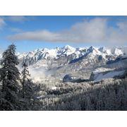 Туры выходного дня в Карпатах и Альпах фото