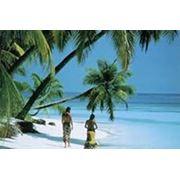 Прекрасная жемчужина SPA-коcметика на Мальдивах фото