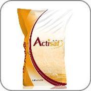 Дрожжи Actisaf фото