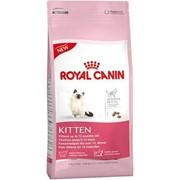 Сухой корм Royal Canin Kitten фото