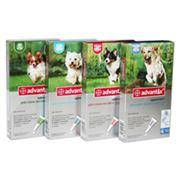 Комбинированный инсекто-акарицидный препарат для собак Адвантикс фото