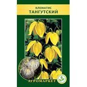 Семена цветов сорт Клематис тангутский. Опт фото