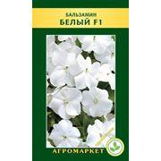 Семена цветов сорт Бальзамин белый F1. Опт фото