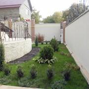Ландшафтный дизайн сада Донецк, Донецкая область фото