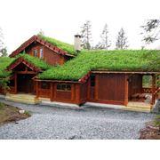 Земляная крыша фото