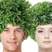 Пересадка волос в Турции фото