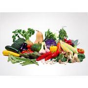 Овощи консервированные консервы овощные фото