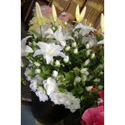 Цветочная композиция из белых лилий и белых роз в черном вазоне. Высота композиции около 1 метра. фото