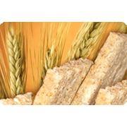 Хлебцы диетические фото
