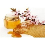 Мед полифлорный фото