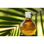 Масло пальмовое фото