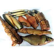 Рыба горячего и холодного копчения: карась карп красноперка красноглазка лещ линь масляная палтус сельдь скумбрия ставрида сом чехонь щука кальмар фото