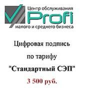 Электронно-цифровая подпись (ЭЦП) Стандартный СЭП фото