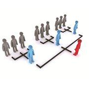Оптимизация организационной структуры компании фото
