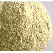 Клейковина пшеничная фото