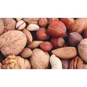 Орехи в ассортименте фото