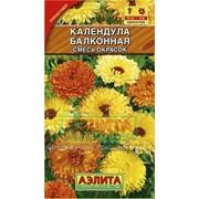 Семена Календула балконная, смесь окрасок Ц/П фото