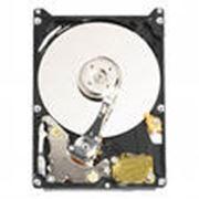 Жесткий диск IDE Western Digital фото