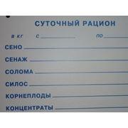 Карточка информационная фото